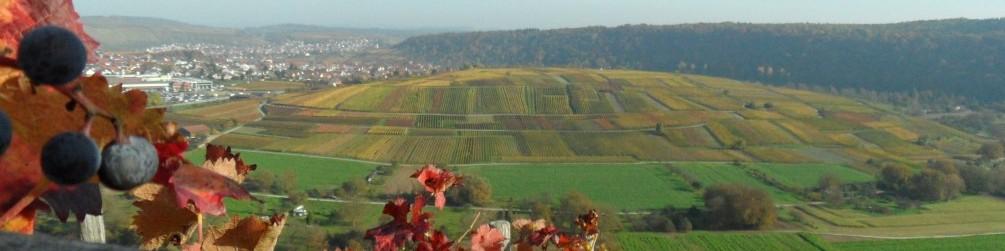 Schwäbischer Albverein | Stromberg Gau